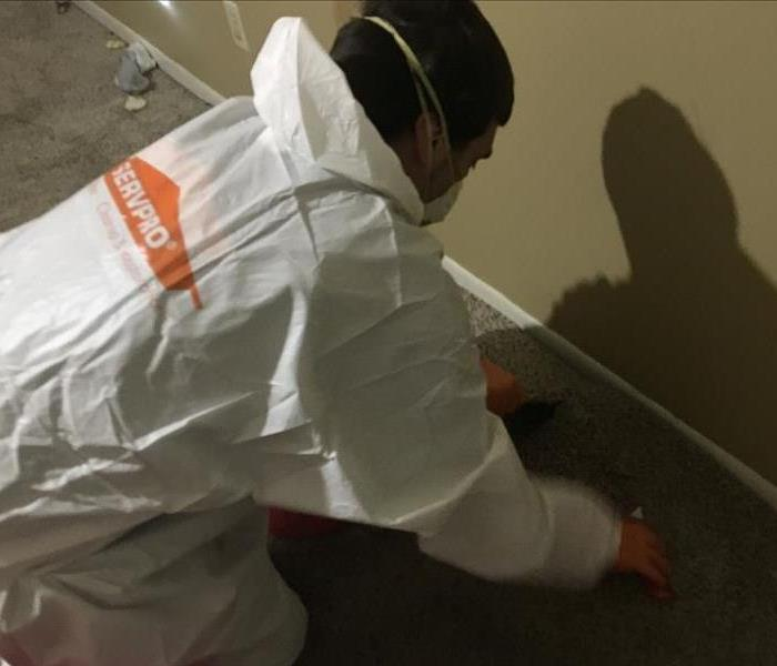 SERVPRO on the Job Before