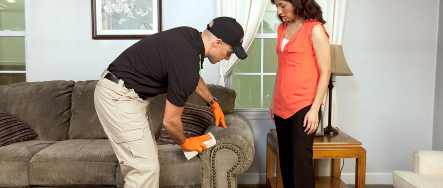 Perry, GA carpet upholstery cleaning